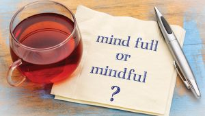Mindfulness and meditation for effective policing