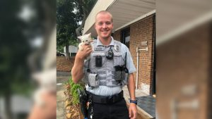 Emerald Isle police officer rescues kitten from busy bridge, helps it find forever home